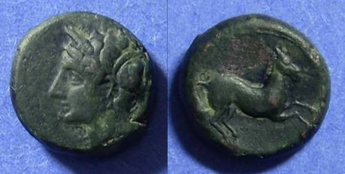 Ancient Coins - Syracuse Sicily  Hieron II 275-215 BC AE15