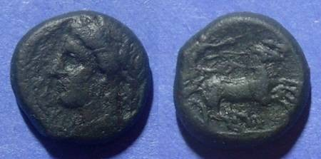 Ancient Coins - Syracuse, Hiketas II 287-278, AE17
