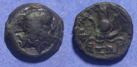 Ancient Coins - Egypt, Ptolemy X 116-101 BC, AE14