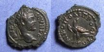Ancient Coins - Nicopolis, Septimius Severus 193-211, AE17