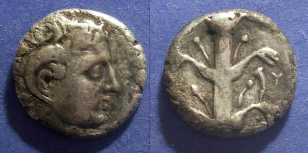 Ancient Coins - Kyrene, Kyrenaica 308-277 BC, Didrachm