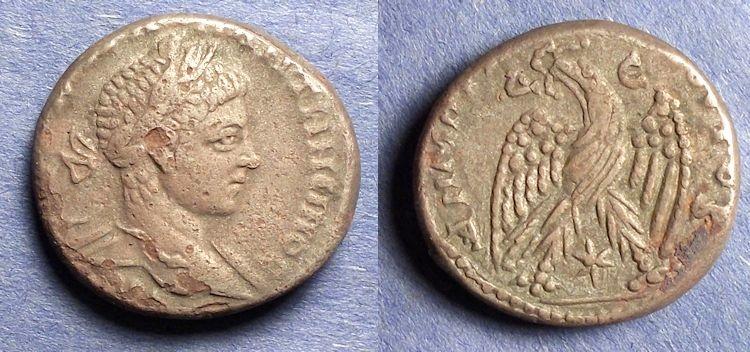 Ancient Coins - Seleucia & Pieria, Antioch, Elagabalus 218-222, Tetradrachm