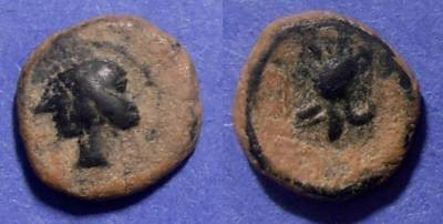 Ancient Coins - Punic Spain,  237-209 BC, AE12