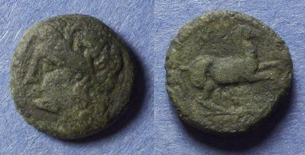 Ancient Coins - Syracuse Sicily, Hieron II 275-215 BC, AE16