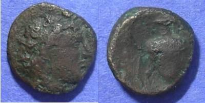 Ancient Coins - Cyclades Andros AE17 – Circa 300-250 BC