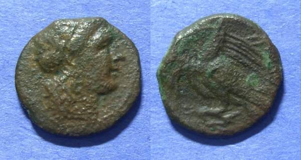 Ancient Coins - Akragas, Sicily 275-240 BC, AE17