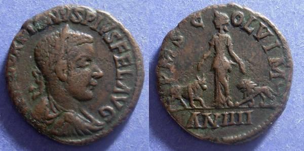 Ancient Coins - Viminacium, Moesia Superior, Gordian III 238-244, AE30