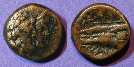 Ancient Coins - Arados Pheonicia - AE13  2nd to 1st Century BC