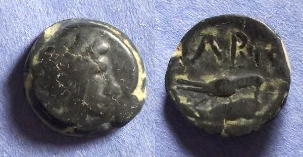 Ancient Coins - Olbia, Sarmatia 325-305 BC, AE16