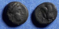 Ancient Coins - Islands off of Caria, Rhodes 304-88 BC, Bronze AE10