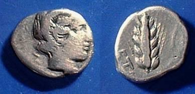 Ancient Coins - Metapontum Lucania  Diobol Circa 375 BC