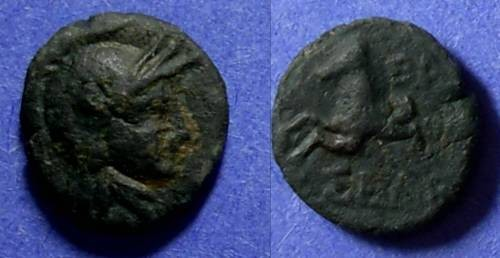 Ancient Coins - Seleucid Kingdom, Seleukos II? 246-225 BC, AE10 - Unpublished