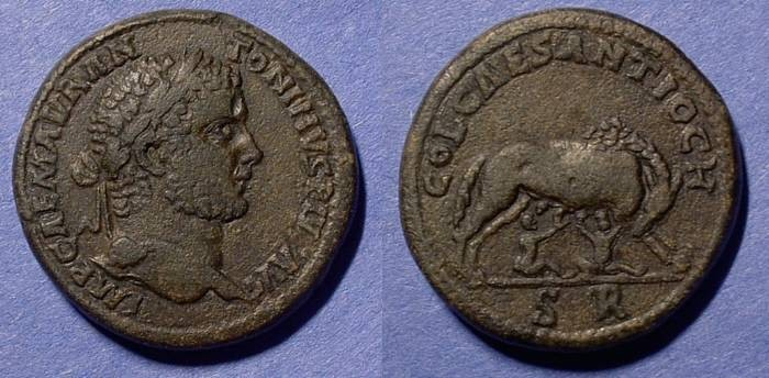 Ancient Coins - Caracalla 198-217 AD AE33 of Antioch in Pisidia - Ex CNG lot