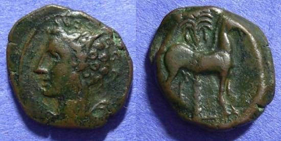 Ancient Coins - Carthage Zeugitana - AE16 Circa 300 BC