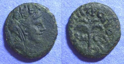Ancient Coins - Tyre Phoenicia - AE15 - 121/2 AD