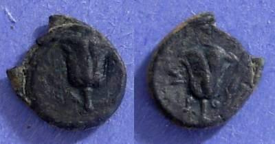 Ancient Coins - Rhodes,  Circa 310 BC, AE11