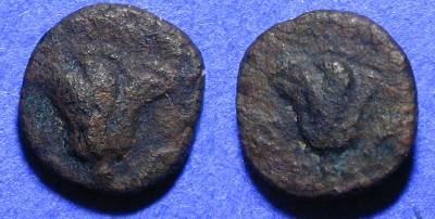 Ancient Coins - Rhodes - AE10 Circa 304BC