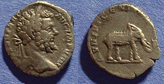 Ancient Coins - Septimius Severus 193-211AD Denarius w/ elephant reverse