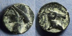Ancient Coins - Punic Iberia,  237-209, AE18
