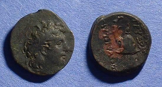 Ancient Coins - Seleucid Kingdom - Tryphon142-138 BC  AE-18