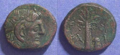 Ancient Coins - Kyrene, Kyrencaia 300-277 BC, AE16