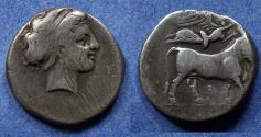 Ancient Coins - Campania, Neapolis 325-241 BC, Nomos