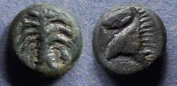 Ancient Coins - Zeugitania, Carthage - imitative Circa 300 BC, AE15