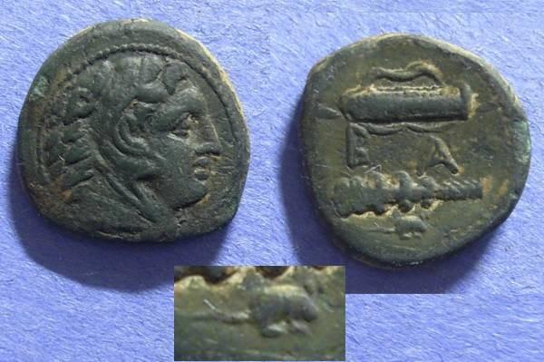 Ancient Coins - Macedonian Kingdom, Alexander III 336-323, AE