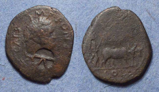 Ancient Coins - Antioch Pisidia, Titus 79-81, AE21 (ex Lindgren collection)