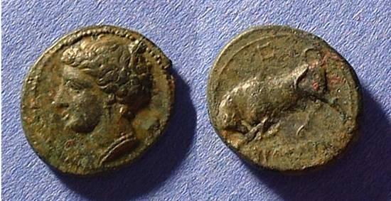 Ancient Coins - Syracuse Sicily - Agathocles 317-289 BC AE-16