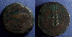 Ancient Coins - Spain, Ilipense Circa 150 BC, AE34