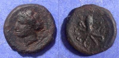 Ancient Coins - Syracuse, Sicily 425-400 BC, AE15