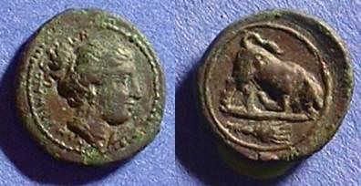 Ancient Coins - Kamarina Sicily - AE-13 - Circa 339  Gorgeous!