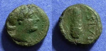 Ancient Coins - Lucania, Paestum Circa 200 BC, AE12