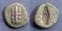 Ancient Coins - Lucania, Metaponton 470-440 BC, Diobol