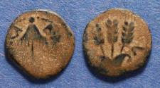 Ancient Coins - Judaea, Agrippa I 37-43, Prutah