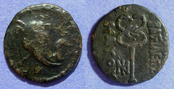 Ancient Coins - Indo-Scythian - Maues 90-57 BC AE27 (Hemiobol)