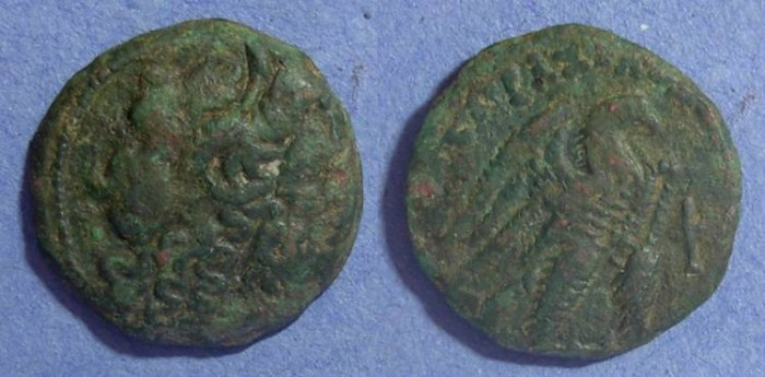 Ancient Coins - Egypt, Ptolemy VIII 145-116 BC, AE23