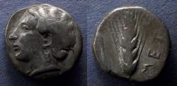Ancient Coins - Lucania, Metapontum 400-340 BC, Nomos