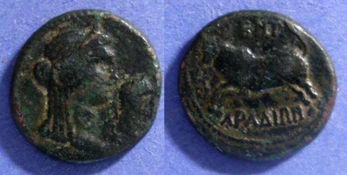 Ancient Coins - Arados, Domitian 96AD, AE20