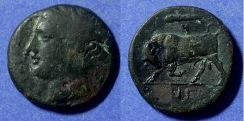 Ancient Coins - Syracuse Sicily Hieron II 275-215 BC AE20