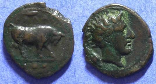 Ancient Coins - Gela Sicily 420-405 BC - Tetras