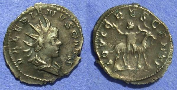 Ancient Coins - Valerian II (Caesar) 253-5 – Antoninianus