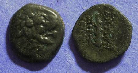 Ancient Coins - Seleucid Kingdom - Antiochos VII 138-129BC AE14