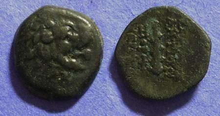 Ancient Coins - Seleucid Kingdom - Antiochos VII 138-129BC AE14