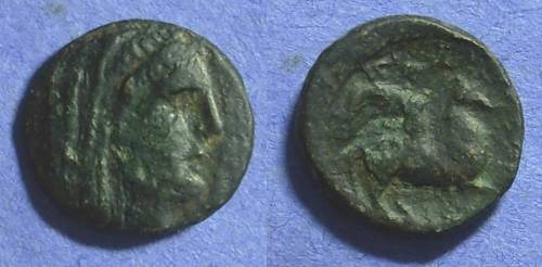 Ancient Coins - Pelinna Thessaly AE19 – 306-197BC