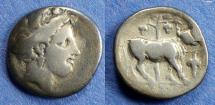 Ancient Coins - Euboea, Histiaea 350-300 BC, Drachm