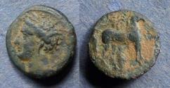 Ancient Coins - Zeugitania, Carthage 260-240 BC, AE16