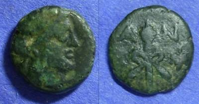Ancient Coins - Cyclades Andros AE14 Circa 130BC *Lindgren plate coin*