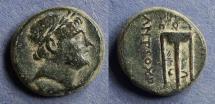 Ancient Coins - Seleucid Kingdom, Antiochos III 222-187 BC, AE17